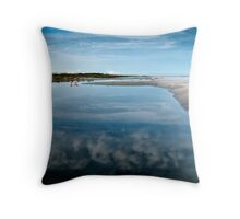pink spoonbills Throw Pillow
