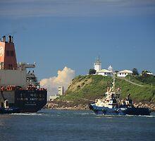 Hanjin Haypoint Cargo Ship by Phil Woodman