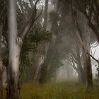 Country mist ... #2 by Rosalie Dale