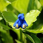 Blue Bear, Green Leaf by Kerry McQuaid