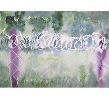 Freedom. Photographic Print