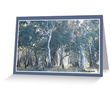 The Common North East Victoria Greeting Card