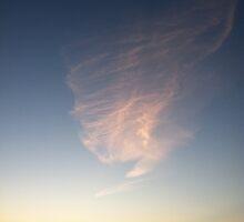 Circus Sunset, Edmonds, Washington by Julie Van Tosh Photography