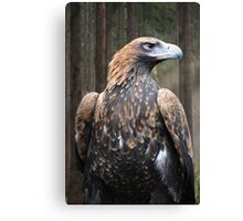 Magestic King Canvas Print