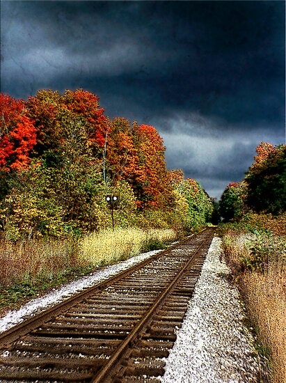 Ontario Autumn by Ellen Cotton