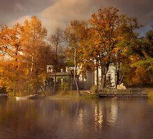 Golden leaves  by JBlaminsky