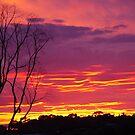 a wonderful sunset  by janfoster