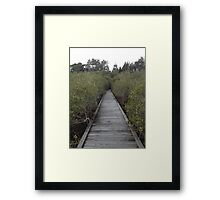 Coffs Harbour Framed Print