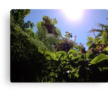 Tropical Backyard Canvas Print