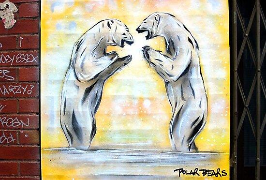 Polars Apart by jahina