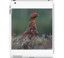 Red Grouse iPad Case/Skin
