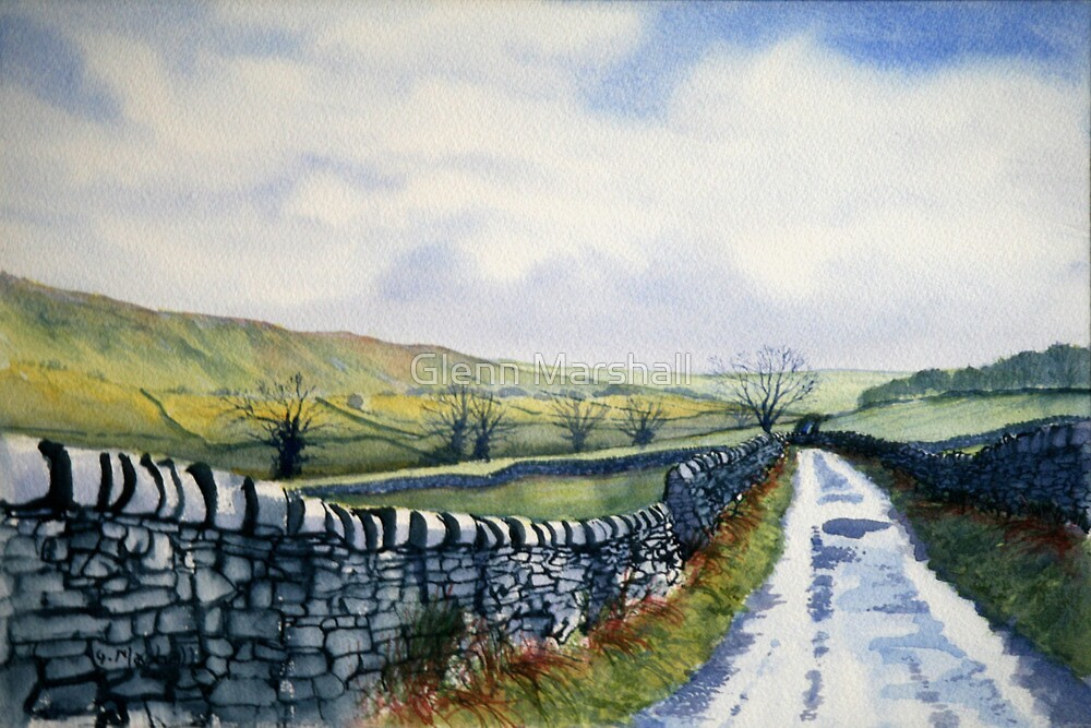 Walk in the Dales with Nicky by Glenn Marshall