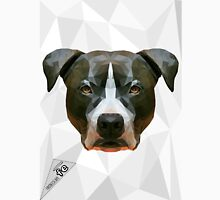 The strong Bully - Pitbull American Amstaff  Unisex T-Shirt
