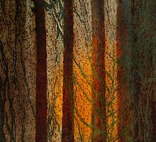 Woodlands by Gordon  Beck