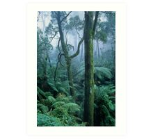 Winter morning on Mount Dandenong Art Print