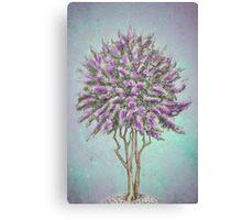 Crepe Myrtle Lavender Canvas Print
