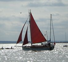 Red Sails without the Sunset by Sandra Caven