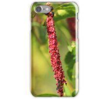 Pink Flowers and Berries iPhone Case/Skin