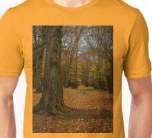 Autumn woodland walk Unisex T-Shirt