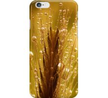 wheat of gold iPhone Case/Skin