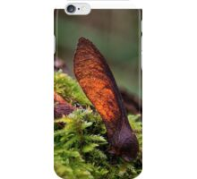 Sycamore helicopters iPhone Case/Skin