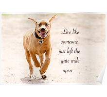 Live like someone left the gate wide open Poster