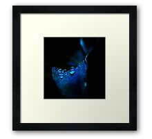 Light in Darkness Framed Print