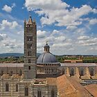Cathedral in Siena by vivsworld