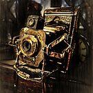 This Old Kodak by Steve Walser
