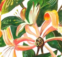 Honeysuckle Bouquet Sticker