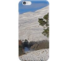 Scots Pine in the Snow iPhone Case/Skin