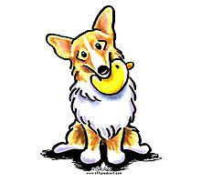 Corgi with Rubber Duck Photographic Print