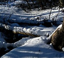 Snowy Creek. by albertot