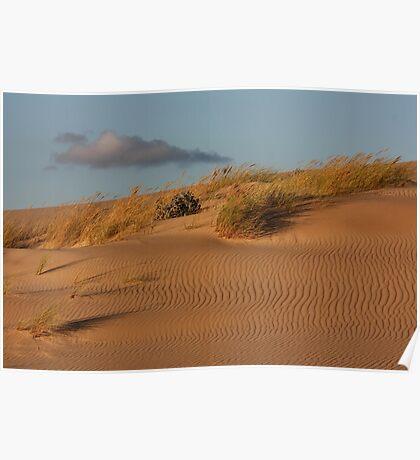 Dune 7848 Poster