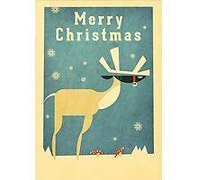 Reindeer 1 Photographic Print