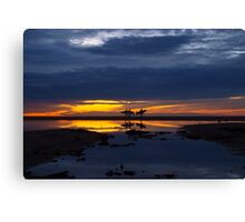 Paddle boarder butterfly Canvas Print