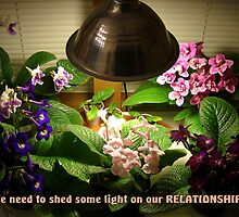 We Need to Shed Some Light on Our Relationship by John Arthur Robinson