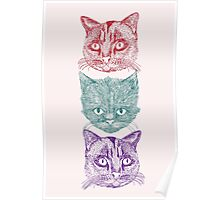 Three Cats Poster