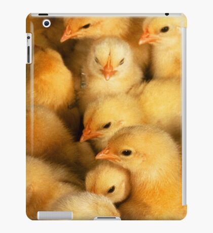 Clutch of Yellow Fluffy Chicks iPad Case/Skin