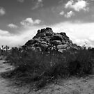 JOSHUA ROCKS by DownByDfault
