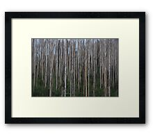 Snow Forest Blur Framed Print