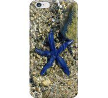 Blue Starfish iPhone Case/Skin