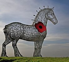Heavy Horse Remembrance by David Alexander Elder