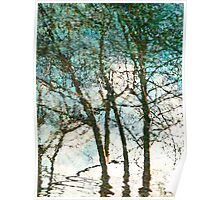The Reflected Trees Poster
