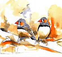 Zebra Finches by TASHHOFER