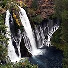 Burney Falls by Dave Davis