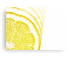 Slices of Citrus Canvas Print