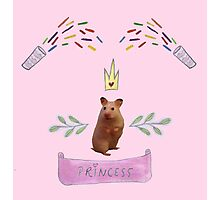 Princess Hamster Banner Mouse Photographic Print
