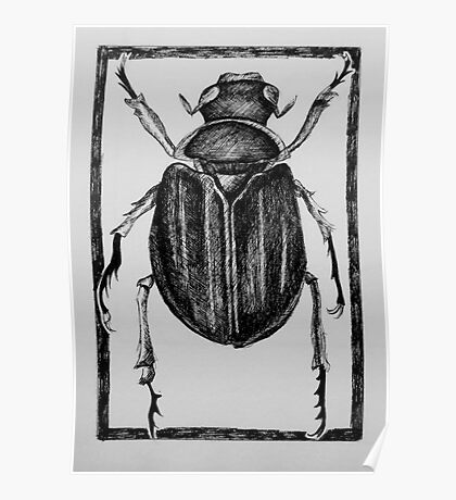 Design for beetle lino print Poster