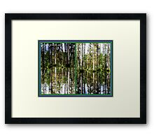 Mirror Images, Cypress Trees Framed Print